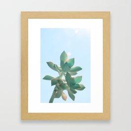 Fat Blue Framed Art Print