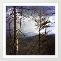 Mountain in the Trees Art Print