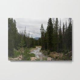 Where the River Flows Metal Print