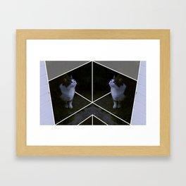 curikitty Framed Art Print