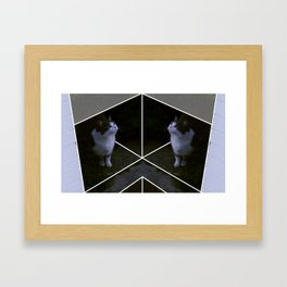 curikitty Framed Art Print