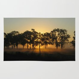 Sunrise Whispers Rug