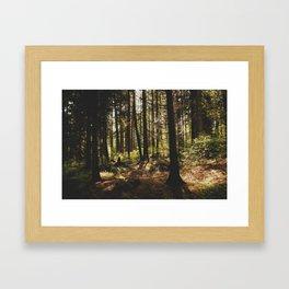 stanley park (3) Framed Art Print