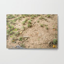 Coming to the Surface, Killing Fields, Cambodia Metal Print