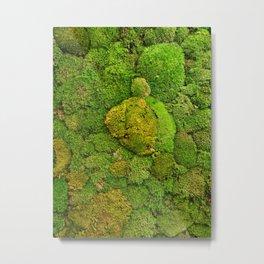 Green moss carpet No2 Metal Print