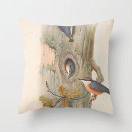 022 Eurasian Nuthatch sitta caesia4 Throw Pillow