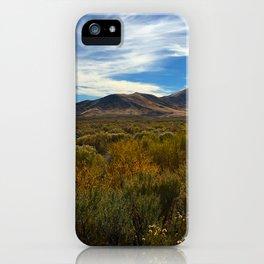 High Desert 2 iPhone Case