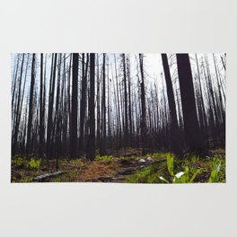 Excelsior Wildfire in the Maligne Valley, Jasper National Park, CA Rug