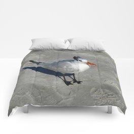 Siesta Key Tern Comforters