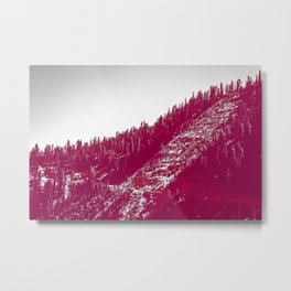 A red velvet myst fogged his eyes but they were evergreen Metal Print