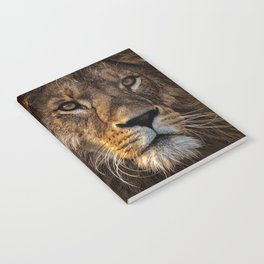 Majestic Lion Notebook