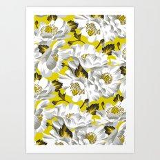 Mount Cook Lily - Yellow/White Art Print