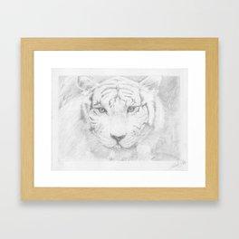 Graphite Tiger  Framed Art Print