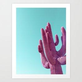 Pink Saguaro Cactus with Blue Sky Art Print