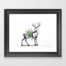 Whitetail Buck Framed Art Print
