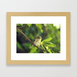 Companion Framed Art Print