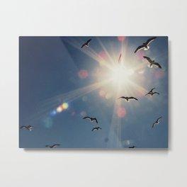fly into the sun Metal Print
