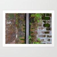 moss Art Prints featuring Moss by ephemerality