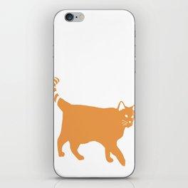 Orange Cat iPhone Skin