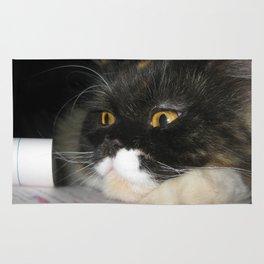 Cat Study Rug