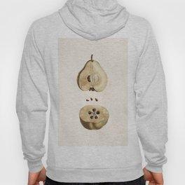 Pear Disection Botanical Illustration Hoody