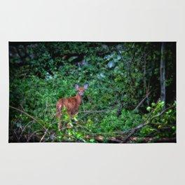 Backyard Bambi Rug