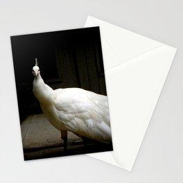 Elegant white peacock vintage shabby rustic chic french decor style woodland bird nature photograph Stationery Cards