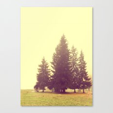 Four in the mist Canvas Print