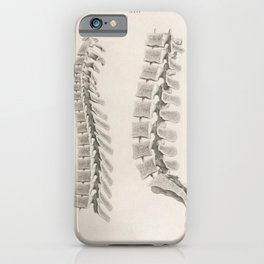 Anatomical Spine iPhone Case