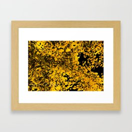 Ginko Leaves In California Framed Art Print
