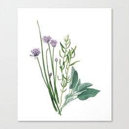 Fresh Herbs Canvas Print