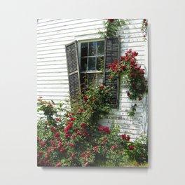 Abandoned Roses Metal Print