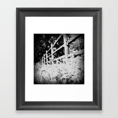 Through the Fence Framed Art Print
