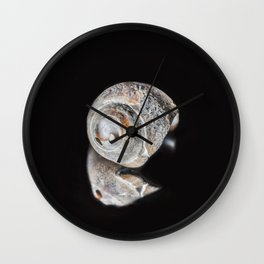 Broken Sea Shell Wall Clock