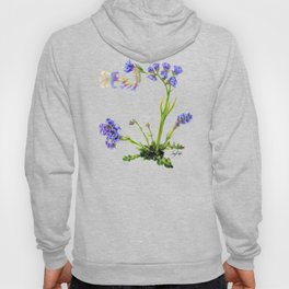 Statice Flower Dissection Hoody
