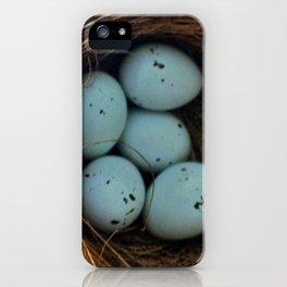 Five Little Eggs iPhone Case