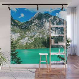 Window To The Wild Wall Mural