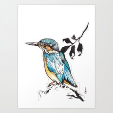 Kingfisher. Art Print