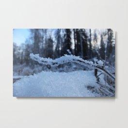 Frosty Branch Metal Print
