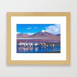 Laguna Colorada, Bolivia Framed Art Print