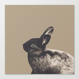 Little Rabbit on Sepia #1 #decor #art #society6 Canvas Print