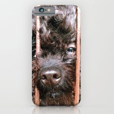 Where's My Master Slim Case iPhone 6s