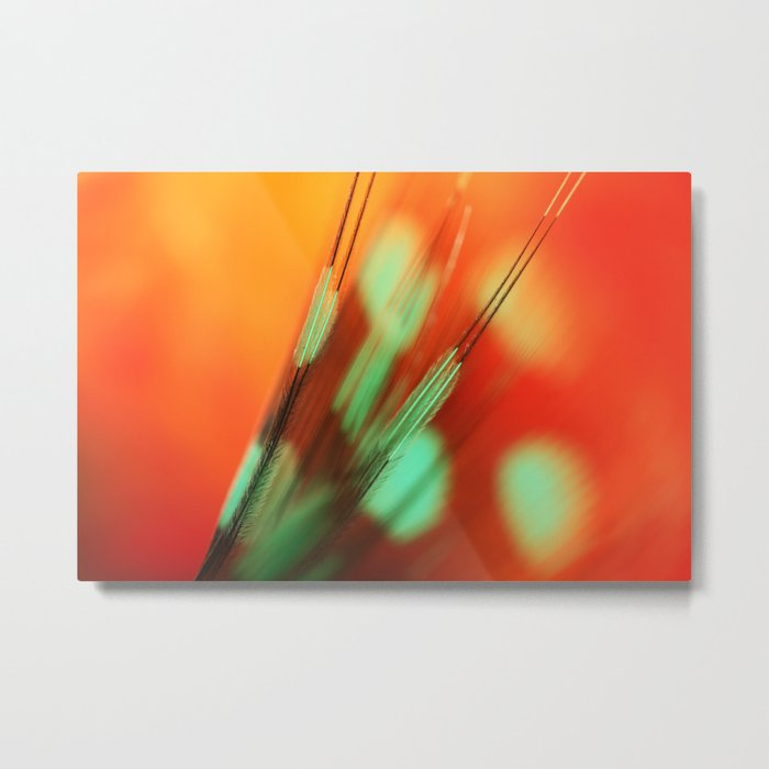 Feather Abstract in Orange Metal Print