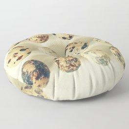 Quail Eggs Floor Pillow