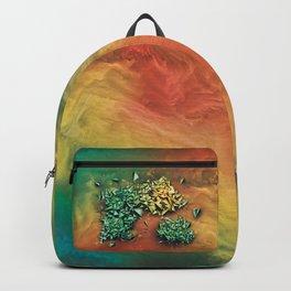 Ammolites Backpack