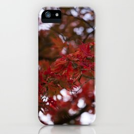 Autumn Red iPhone Case