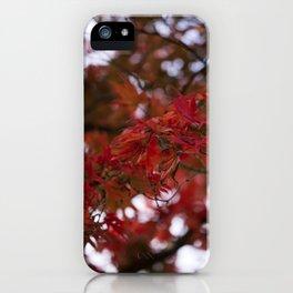 Autumn Red iPhone Case