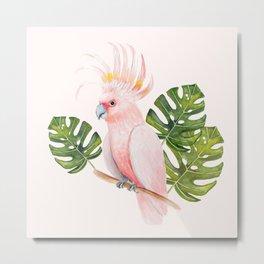 Cockatoo Metal Print