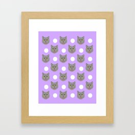 Kai - British shorthair cat gifts for cat lovers and cat lady gifts.  Cat people gifts Framed Art Print