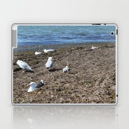 Resting Laptop & iPad Skin